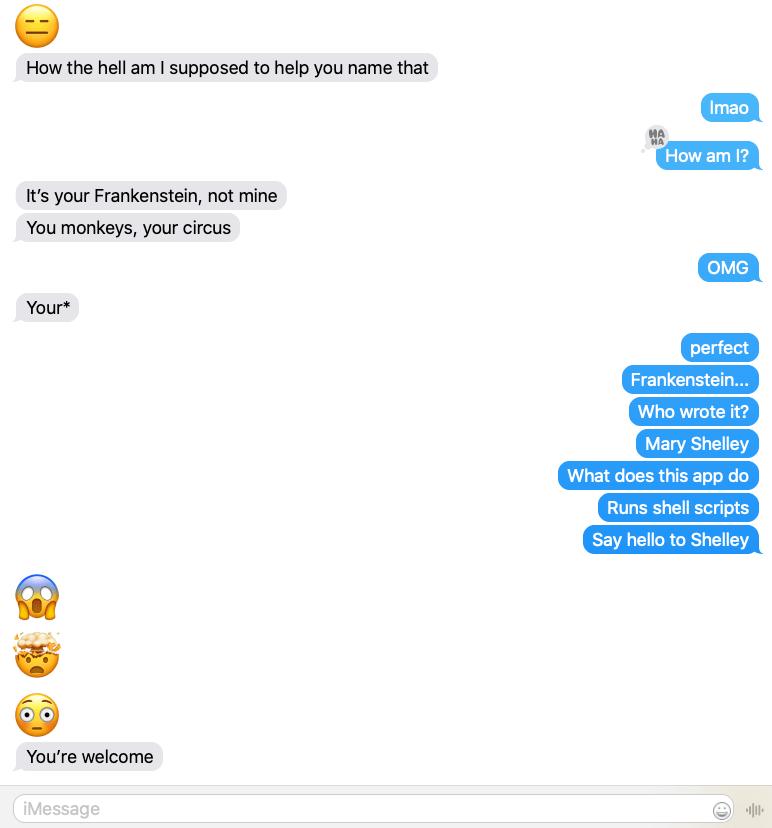 Shelley Messages.app conversation